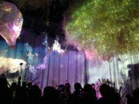 「近未来なお花見に行きました!「FLOWERS by NAKED 2018(フラワーズバイネイキッド 2018)-輪舞曲-」」のアイキャッチ画像